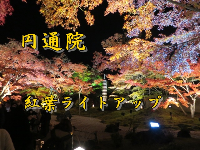 円通院紅葉ライトアップ 宮城県松島町
